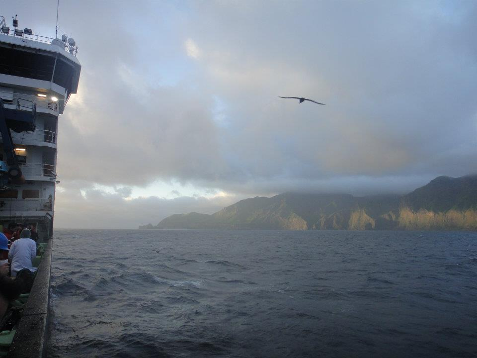 Arrival at Gough Island in the mid-Atlantic